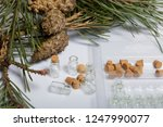 glass bottles with corks in the ... | Shutterstock . vector #1247990077
