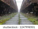 old train wagons parked in the... | Shutterstock . vector #1247998501