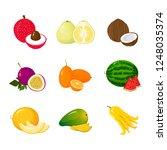 tropical exotic fruits set...   Shutterstock . vector #1248035374