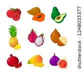 tropical exotic fruits set...   Shutterstock . vector #1248035377