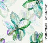 rubber fig watercolor... | Shutterstock . vector #1248324934
