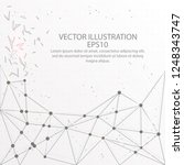 abstract form mesh line and... | Shutterstock .eps vector #1248343747
