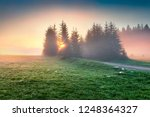 fantastic summer sunrise in... | Shutterstock . vector #1248364327