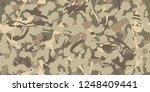 brown beige camouflage seamless ... | Shutterstock .eps vector #1248409441