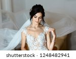 beautiful young bride with... | Shutterstock . vector #1248482941