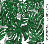 monstera pattern.  exotic palm... | Shutterstock .eps vector #1248484741