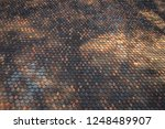 the surface and form of the... | Shutterstock . vector #1248489907