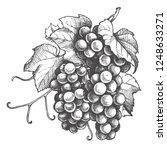 Monochrome Illustration Grape...