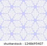 intricate abstract geometric... | Shutterstock .eps vector #1248695407
