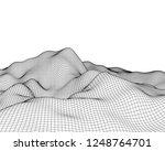 abstract vector mesh landscape. ... | Shutterstock .eps vector #1248764701