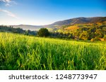 Spring Alps Landscape With...