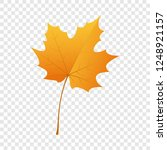 maple leaf icon. flat...   Shutterstock .eps vector #1248921157