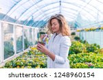 scientist treating a plant with ... | Shutterstock . vector #1248960154