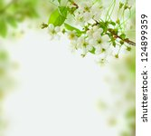 Stock photo spring blossom background abstract floral border of green leaves and white flowers 124899359