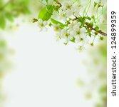 Spring Blossom Background  ...