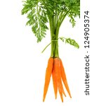 fresh carrot  with green leaves ... | Shutterstock . vector #124905374