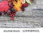 chrstmas decoration border on... | Shutterstock . vector #1249089031