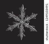 snowflake isolated on black... | Shutterstock .eps vector #1249103491