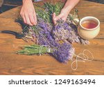 beautiful smell violet wild... | Shutterstock . vector #1249163494