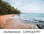 manzanillo beach in the costa... | Shutterstock . vector #1249163797