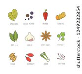 vector set of culinary spices...   Shutterstock .eps vector #1249232854