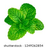fresh mint leaves isolated on... | Shutterstock . vector #1249262854