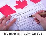 filling application  female... | Shutterstock . vector #1249326601