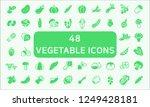 set of 48 vegetable related... | Shutterstock .eps vector #1249428181