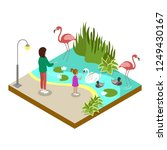 cage with flamingos isometric... | Shutterstock . vector #1249430167