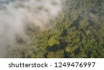 aerial view tropical forest...   Shutterstock . vector #1249476997