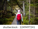 back view of woman in warm... | Shutterstock . vector #1249497241