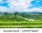 jatiluwih rice terraces  bali ...   Shutterstock . vector #1249576687
