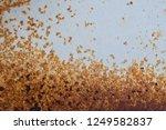 metal rust background  decay... | Shutterstock . vector #1249582837