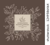 background with ashwagandha ... | Shutterstock .eps vector #1249586464