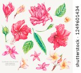 vector set of vintage floral... | Shutterstock .eps vector #1249601434