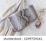 fashion women accessories.... | Shutterstock . vector #1249724161