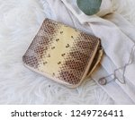 fashion women accessories.... | Shutterstock . vector #1249726411