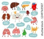 Human Internal Organs. Cartoon...