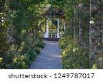 yokohama rose garden | Shutterstock . vector #1249787017
