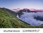 flowers above the clouds. one... | Shutterstock . vector #1249835917