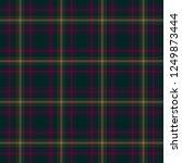 tartan traditional checkered...   Shutterstock . vector #1249873444