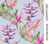 succulents and tropical leaves... | Shutterstock . vector #1249997287
