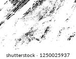 abstract background. monochrome ... | Shutterstock . vector #1250025937