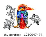 watercolor hand painted with... | Shutterstock . vector #1250047474