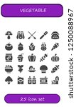 vector icons pack of 25 filled... | Shutterstock .eps vector #1250088967