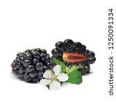 fresh  sweet and tasty... | Shutterstock .eps vector #1250091334