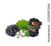 fresh  sweet and tasty... | Shutterstock .eps vector #1250091364
