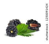 fresh  sweet and tasty... | Shutterstock .eps vector #1250091424