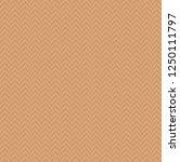tan herringbone decorative... | Shutterstock .eps vector #1250111797