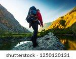 hiker with backpack walks... | Shutterstock . vector #1250120131